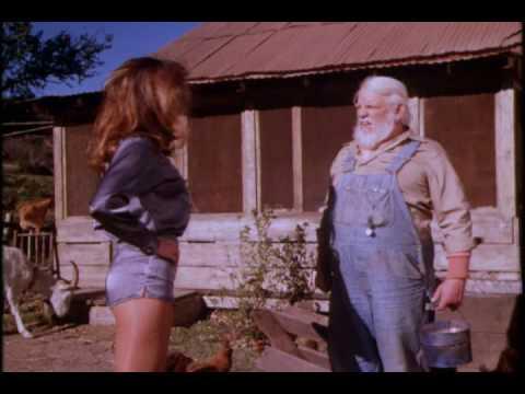 Daisy Duke hotpants and pantyhose
